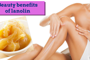 Beauty benefits of lanolin TheFuss.co.uk