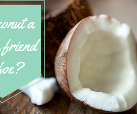 Is coconut good or bad for your health? TheFuss.co.uk