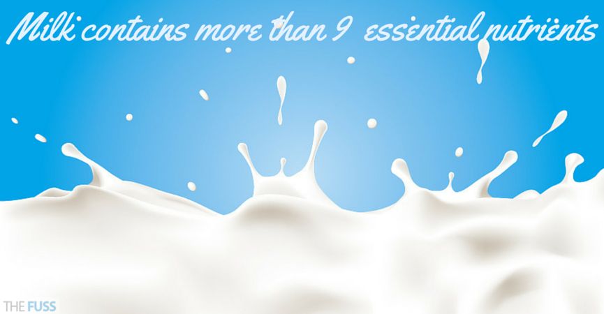 Milk contains more than 9 essential nutrients TheFuss.co.uk