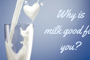 Why is milk good for you TheFuss.co.uk