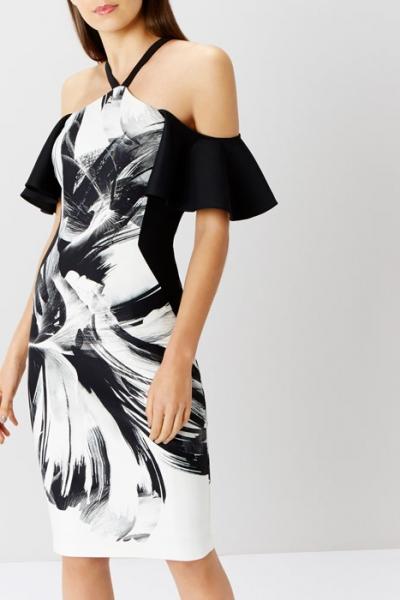 Coast Waldorf Shift Dress