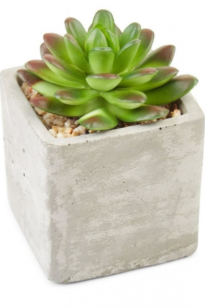 New Look Grey Concrete Mini Artificial Spikey Plant