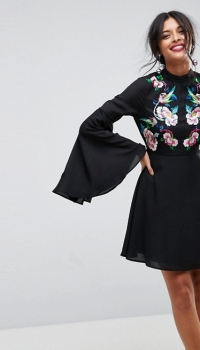ASOS Dramatic Sleeve Embroidered Mini Dress