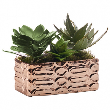Peony Artificial Succulents In Copper Tray