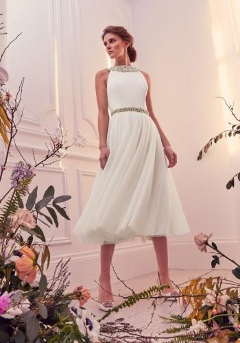 Ted Baker Embellished Detail Tutu Midi Dress