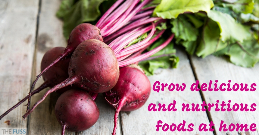 Grow delicious and nutritious foods at home TheFuss.co.uk