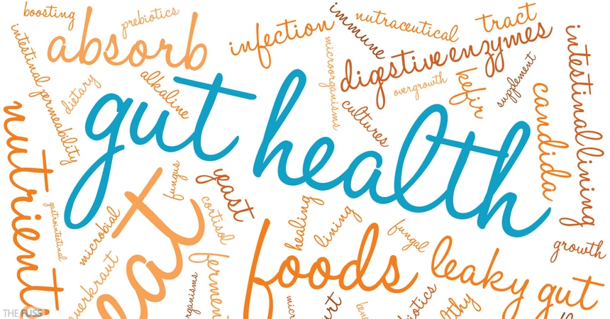 Common Gut Conditions And How To Treat Them